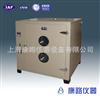 工业用101A-6鼓风干燥箱