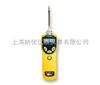 PGM-7320美國華瑞MiniRAE3000VOC檢測儀