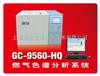 GC-9560-HQ煤气分析专用色谱仪