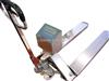 南昌防爆电子地磅,3吨不锈钢电子叉车秤