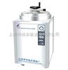 LDZH-200KBS 立式压力蒸汽灭菌器/蒸汽灭菌器/灭菌锅 LDZH-200KBS