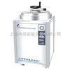 LDZH-100KBS立式压力蒸汽灭菌器/压力蒸汽灭菌器/灭菌锅 LDZH-100KBS