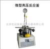 SLM100南京供应微型高压反应釜