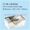 TK-CP-8小鼠饲养笼
