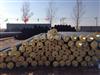 dn160温泉水PPR保温管的批发价格,温泉水PPR保温管的产品性能