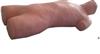 KAG-SJC锁骨下静脉穿刺模型(电子监测)